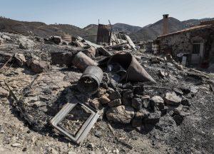 Ajuda a agricultor, afetado pelo incêndio na Serra de Silves